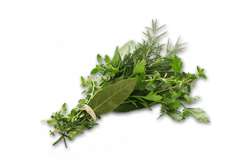 More about herbs